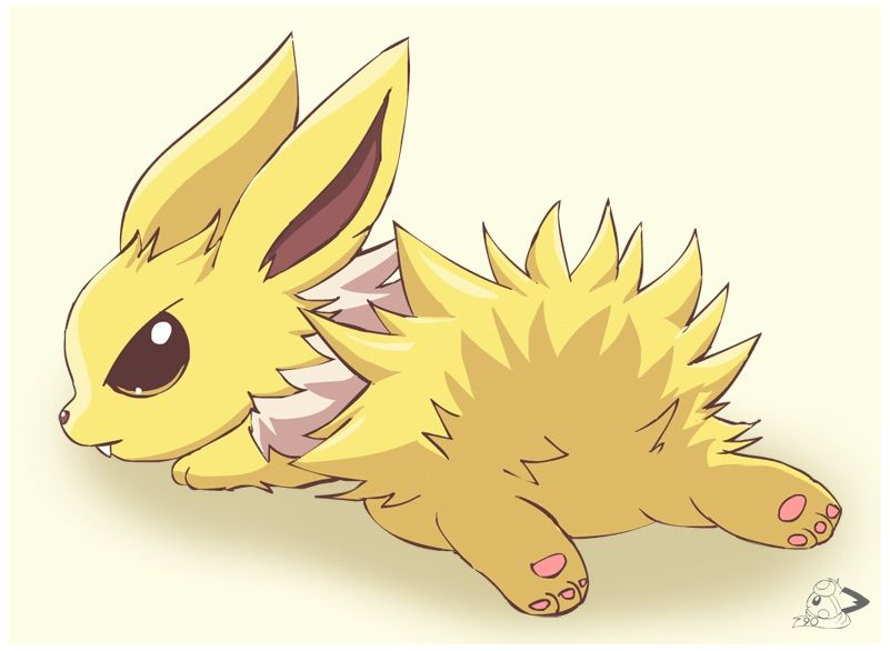 Baby Jolteon female  Pokmon Amino