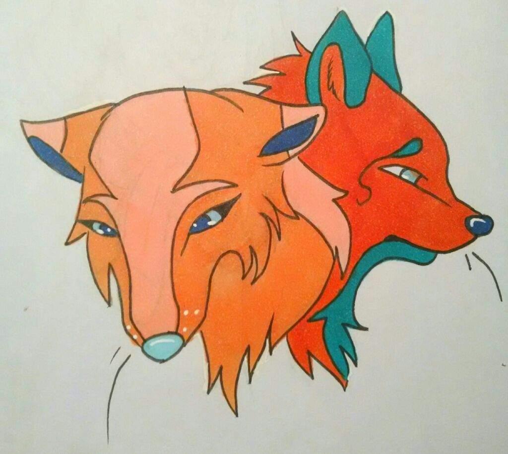 Wolf Drawing Wolf Amino Amino