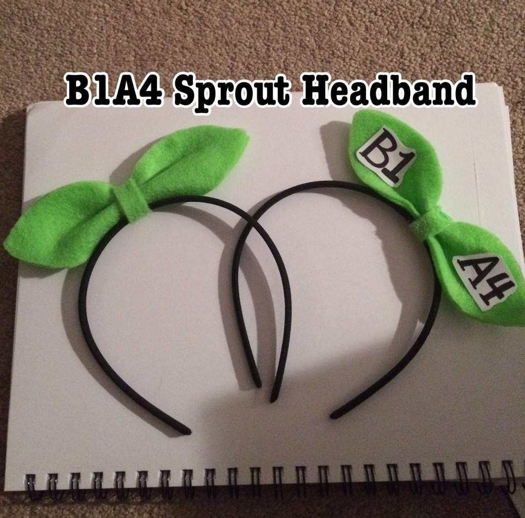 B1A4 Sprout Headband 🌱  c089550372b