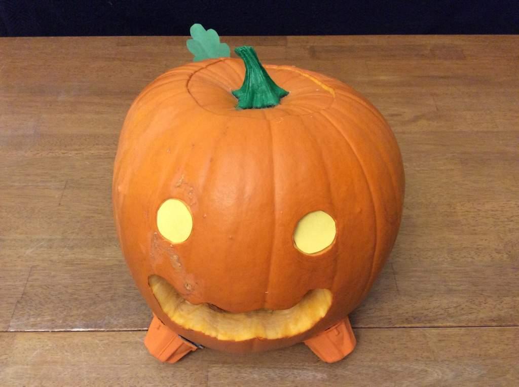 Pumpkin dog carving!
