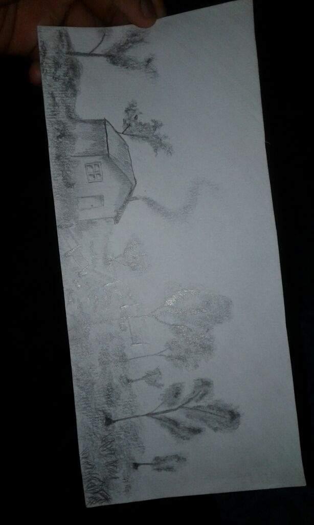 Dibujo Realista De Paisajes Y Un Lobo Gato Y Perro Arte Amino Amino