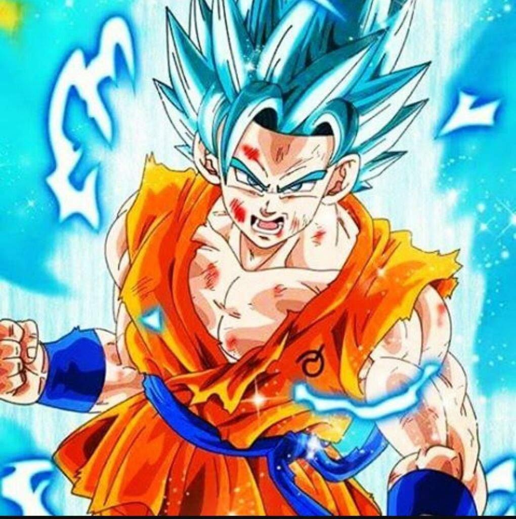 The Final Drawing of Super Saiyan God Goku and Super