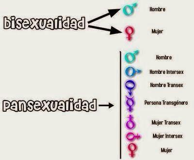 Frases Y Estereotipos Parte 1 Pansexuales Lgbt Amino
