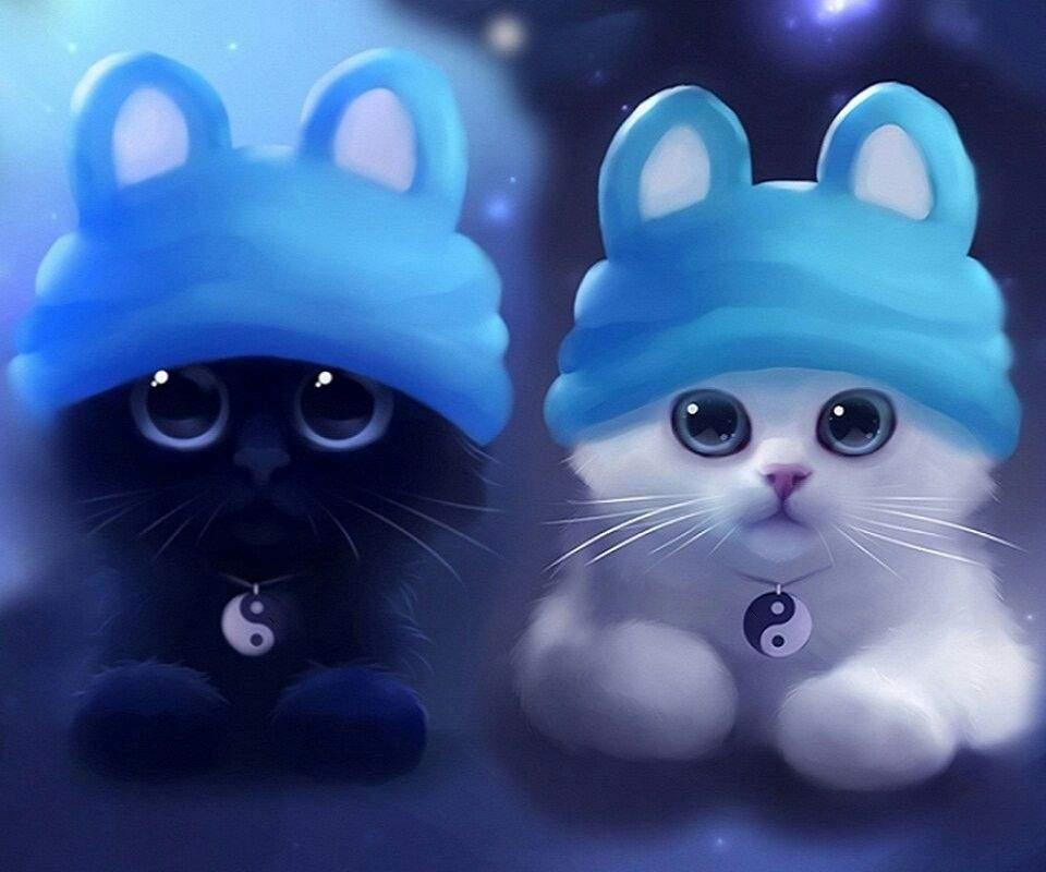 Para Los Amantes De Gatos