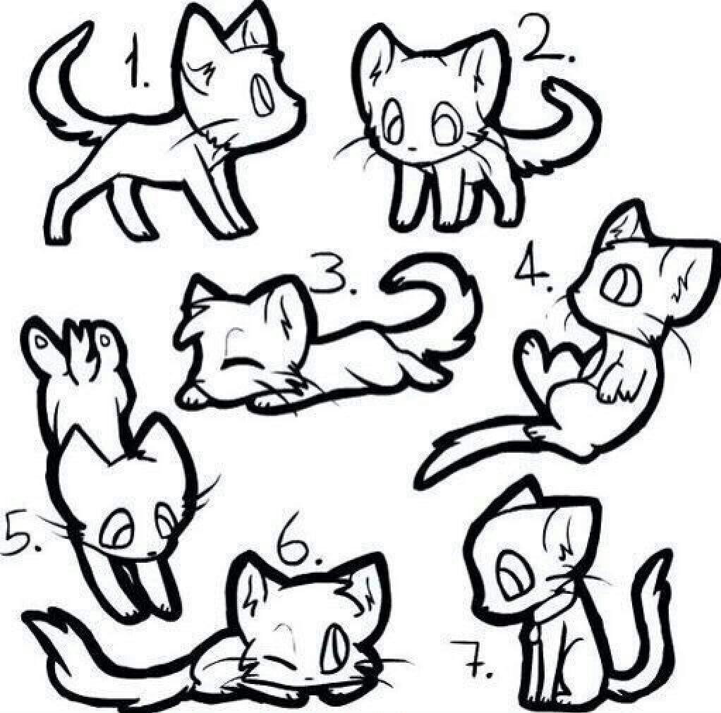 A cat template   Warrior Cats 4 life Amino  Warrior Cat Chibi