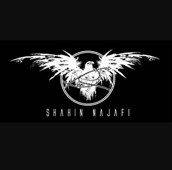 Shahin Najafi | Wiki | Metal Amino