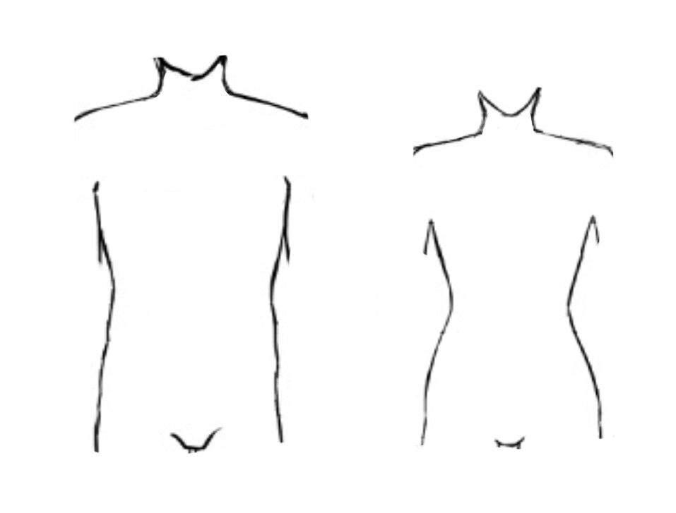 👬Como dibujar un Cuerpo: Torso •Avanzado• 👭 | •Anime• Amino