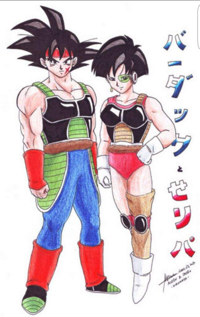 The Different Variations Of Saiyan Armor Dragonballz Amino Website by john carter | contact us here team@cosplaycorp.net. different variations of saiyan armor