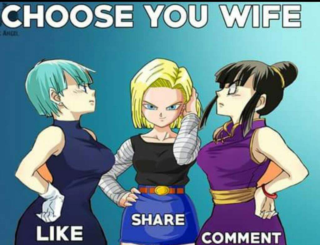 Who Would You Choose As Your Wife Chi Chi Bulma 18 Dragonballz Amino