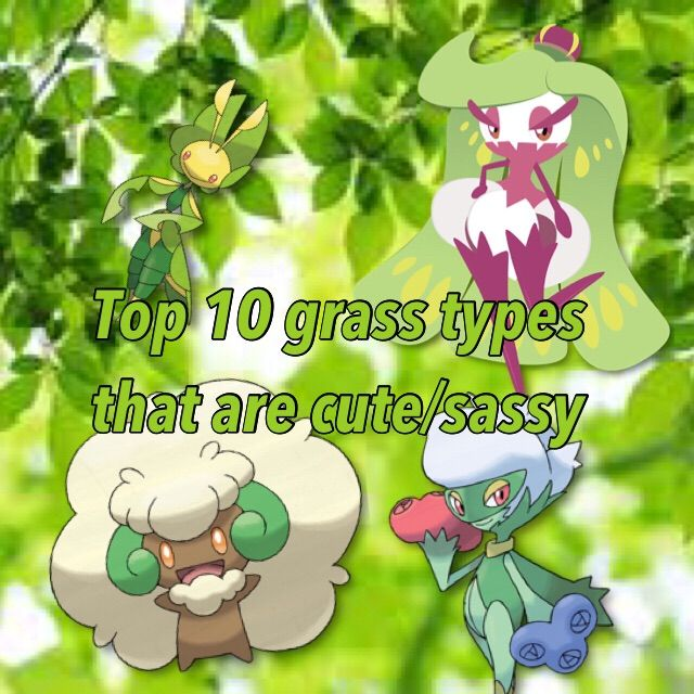 Top 10 Grass Types That Are Sassy Cute Pokémon Amino