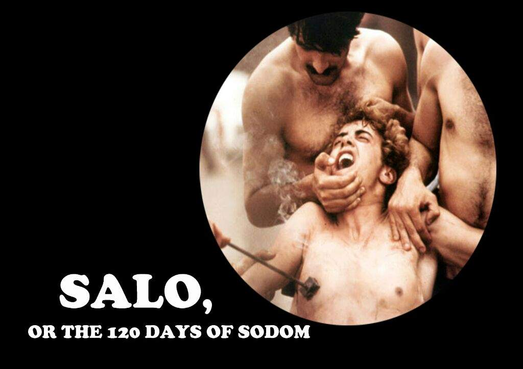 salo guys Find great deals on ebay for salon guys shop with confidence.