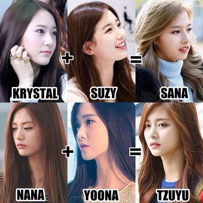 Who do you think Sana and Tzuyu look like? | Twice (트와이스)ㅤ Amino