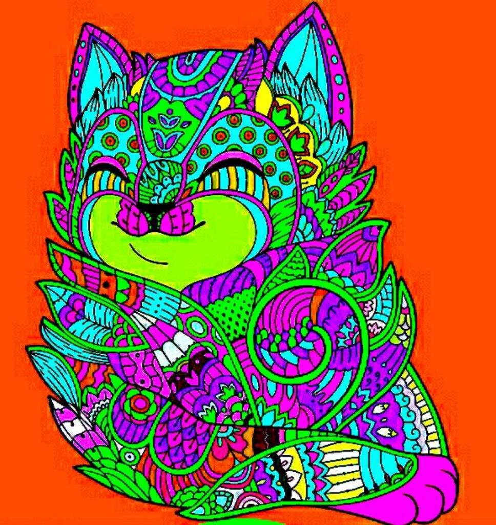 Coloreando un gato | Furry Español Amino