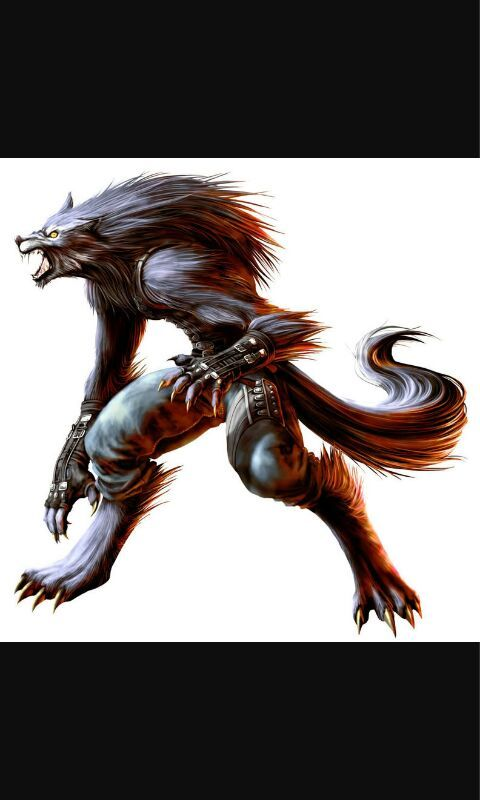 Hombre Lobo Anime