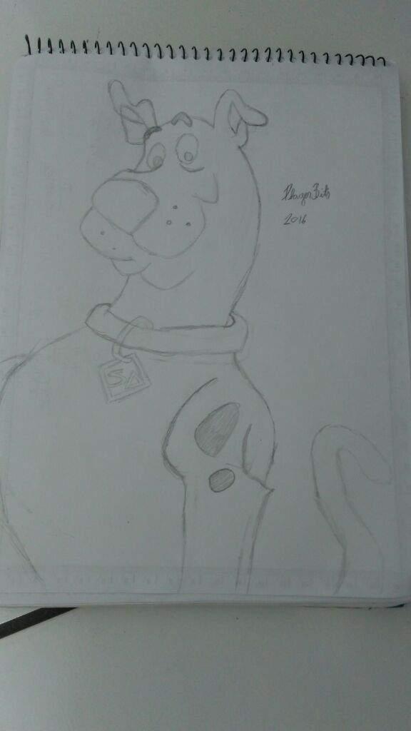 Scooby Doo Desenho Comics Portugues Amino
