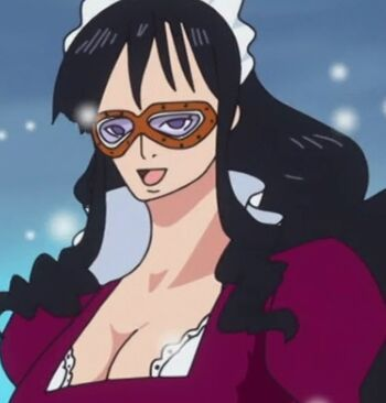 A one piece animation anime amino - Toei animation one piece ...