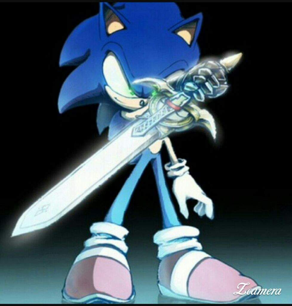Sir Sonic Knight Of The Wind Poem Sonic The Hedgehog Amino