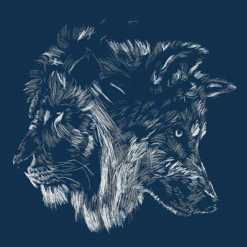 Ser Como Un Lobo Fuerte En La Soledad Y Solidario Con La Manada