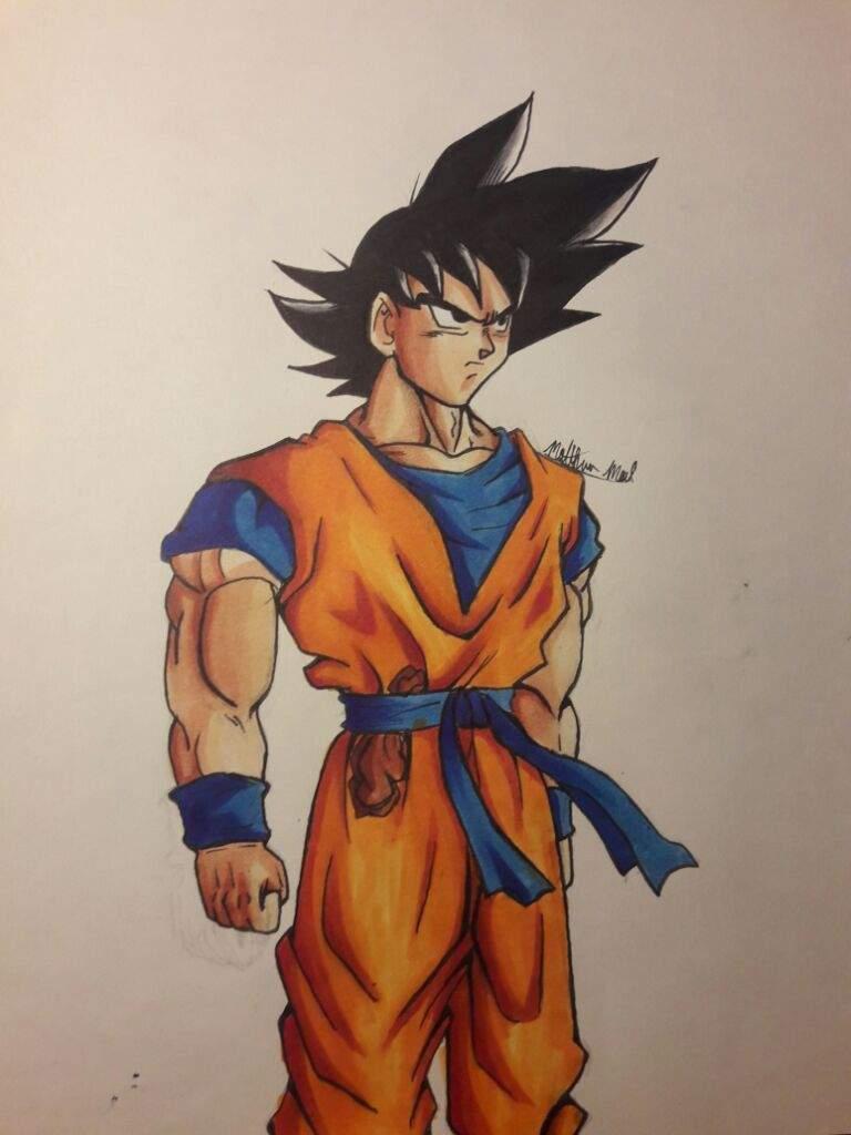 Goku base form   DragonBallZ Amino