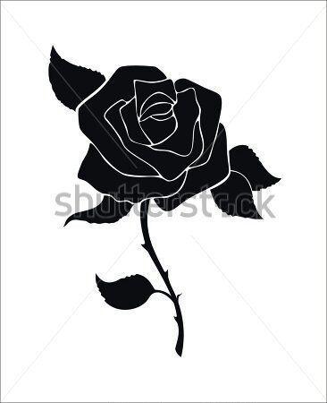Rosa Preta Ou Black Rose Oque Significa Otanix Amino