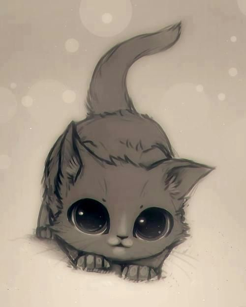 Desenhos De Gatos Kawaiis Fofura Total Kawaii Pt Br Amino