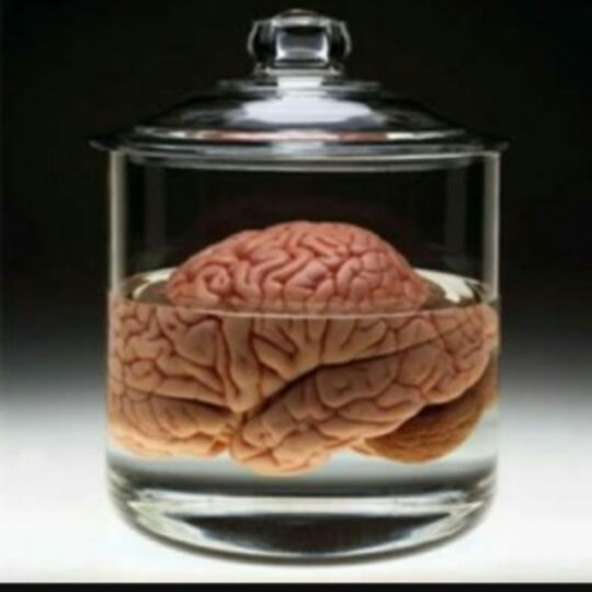 Resultado de imagen para matrix el cerebro en el frasco
