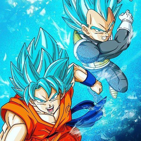 SSGSS BLUE VEGETA VS SSJ GOD GOKU?! Who Would Win?!?! | Anime Amino
