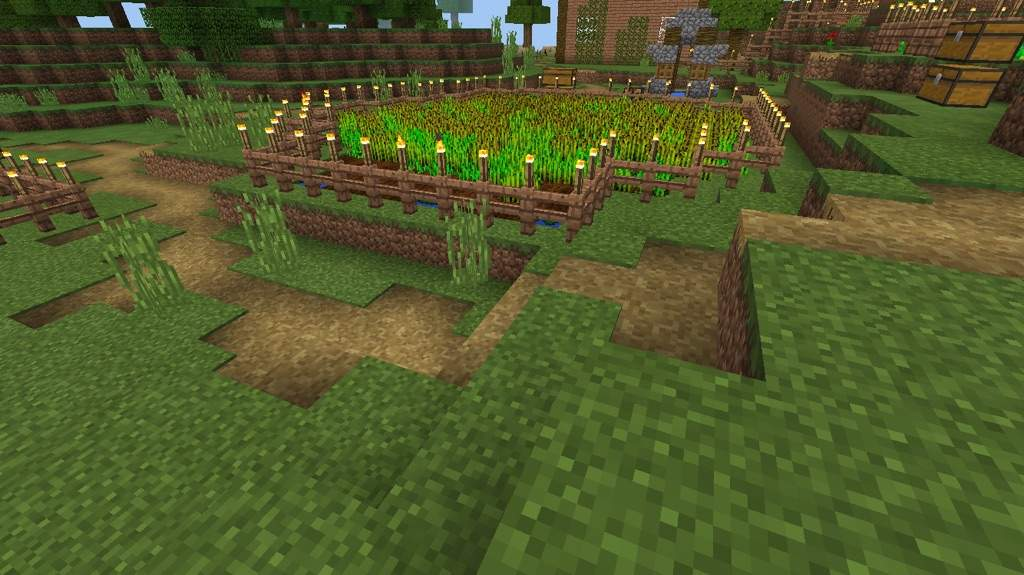 Cocoa Bean Farm Conpleted Minecraft Amino Today on minecraft amplified on hermitcraft, i'll make my massive cocoa bean farm design with some beans i brought back from the jungle. cocoa bean farm conpleted minecraft amino