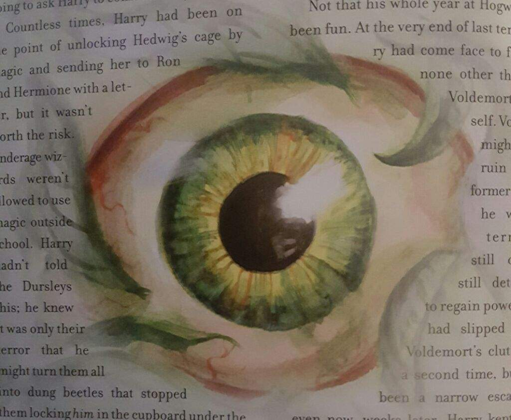 Chamber of Secrest Illistrated Book Part 2 | Harry Potter Amino