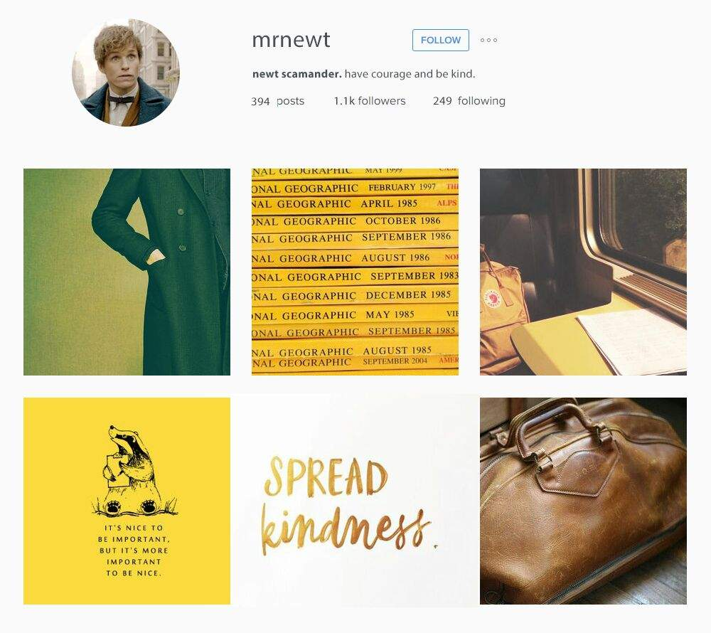 If Fantastic Beasts Characters Had Instagram | Harry Potter
