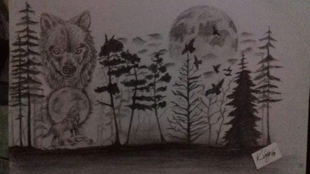 Dibujo De Una Bosque Con Luna Llena Y Lobos Arte Amino Amino