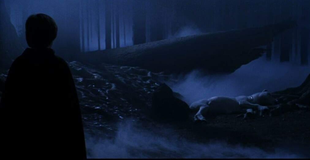 Criaturas De Hp Hab Da Floresta Unic 243 Rnio ⚡ Harry