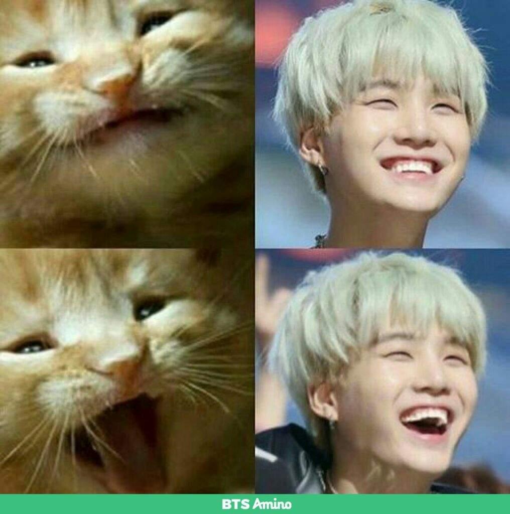 Bts Meme 2 Yoongi Army S Amino