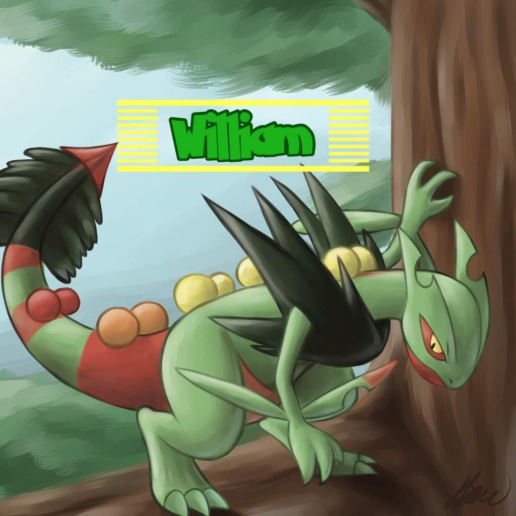 Alphaoutlaws Top 10 Favorite Pokémon Pokémon Amino