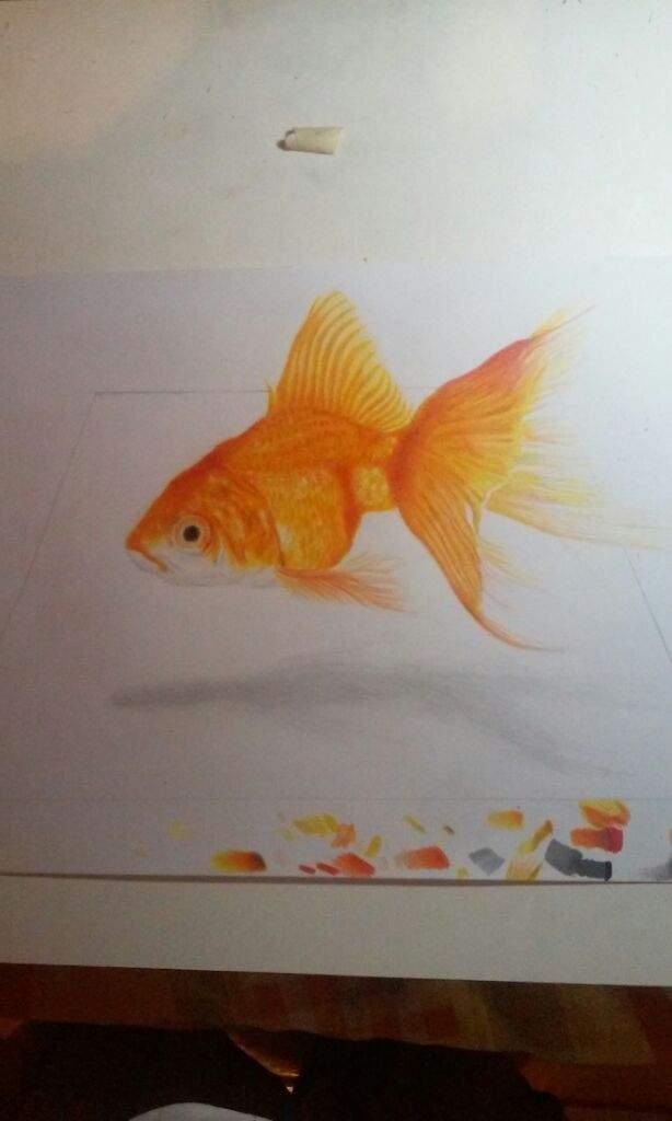 Pez dorado dibujo terminado  Arte Amino Amino