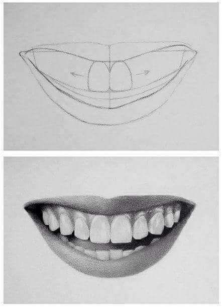 خطوات رسم الانف والفم الفن والرسم Amino