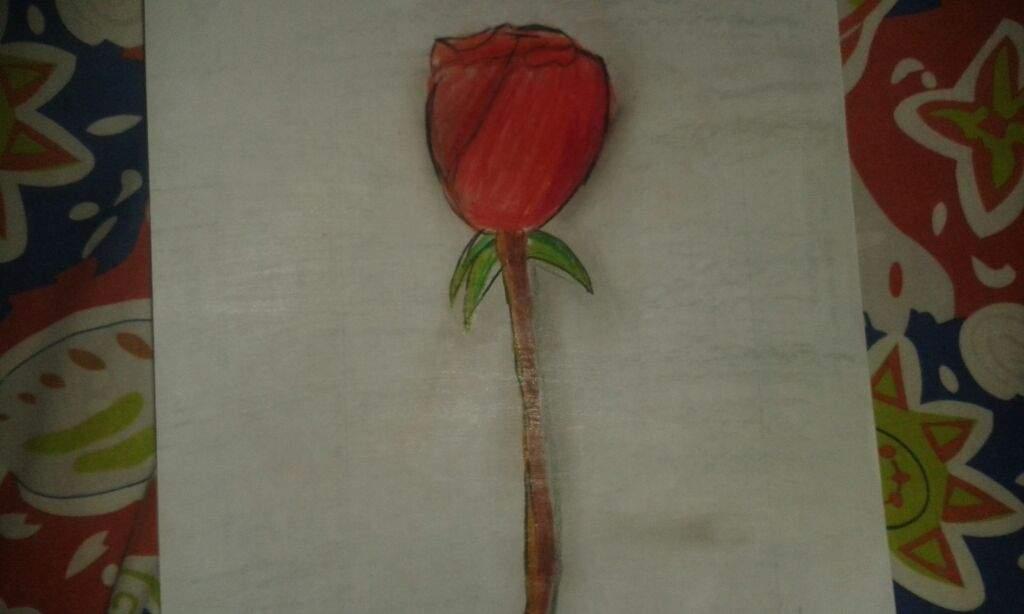 Rosa Dibujo A Color Arte Amino Amino
