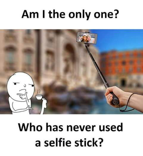 Am I Only One? - Selfie Stick | Furry Amino