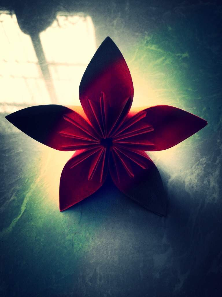 5 petal flower origami and paper crafts amino mightylinksfo