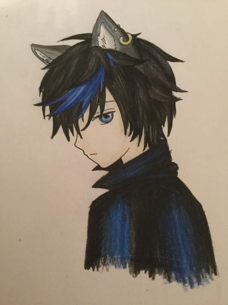 Anime Cat Ears Boy