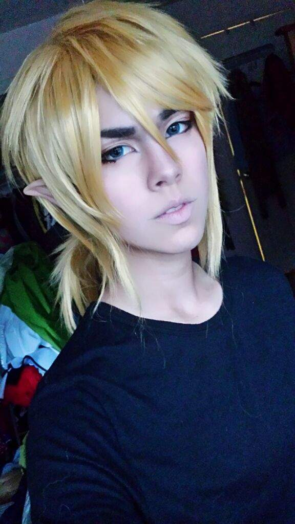 Breath Of The Wild Link Cosplay Amino