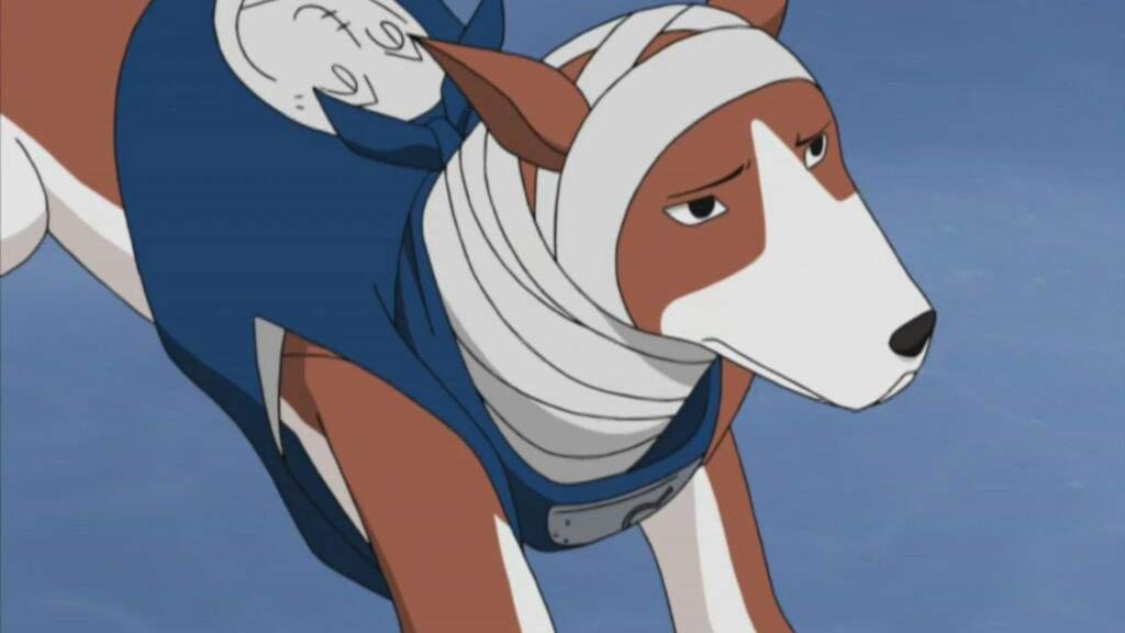 Kuchiyose Ninken | Wiki | Naruto Shippuden Online Amino