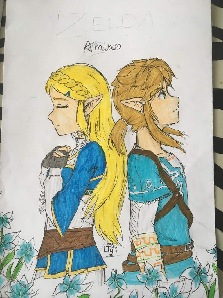 Breath Of The Wild The Legend Of Zelda Amino