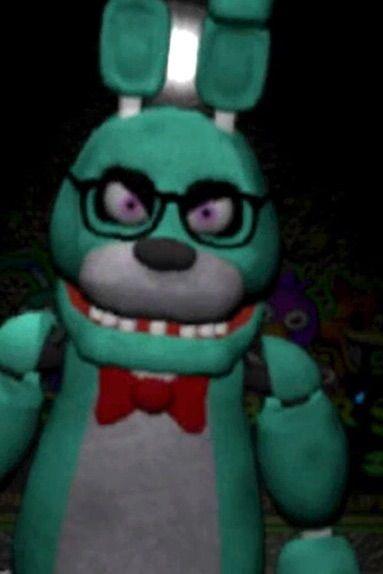 Freddy S Cat