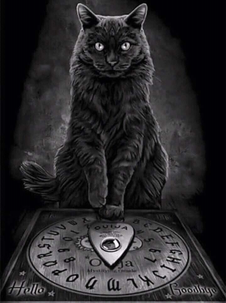 Ouija Board Rules | Paranormal Amino