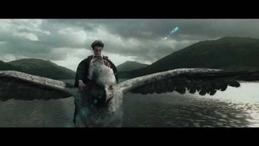 In 1993 Rubeus Hagrid Brought His First Care Of Magical Creatures Class To See And Study Buckbeak As Well Other Hippogriffs Under Hagrids Direction