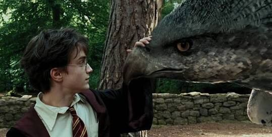 However Using A Time Turner Harry Potter And Hermione Granger Rescued Buckbeak Just Prior To The Execution Originally They Had Heard Swish Of An Axe