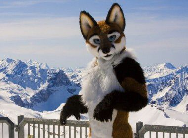Styles of fursuits | Furry Amino