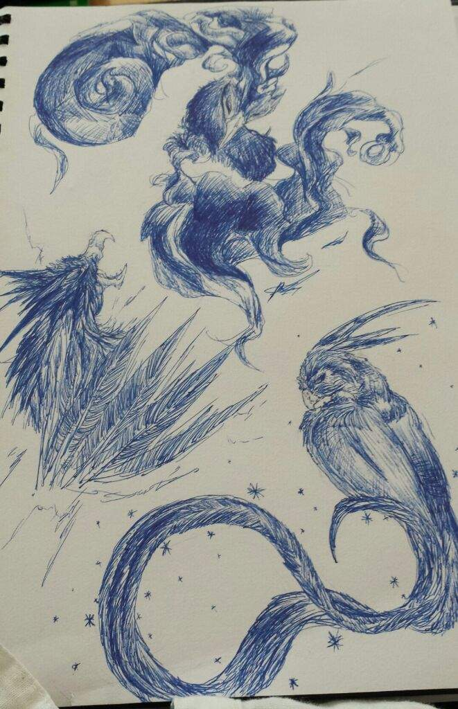 Legendary Birds Pen Sketch Pokémon Amino