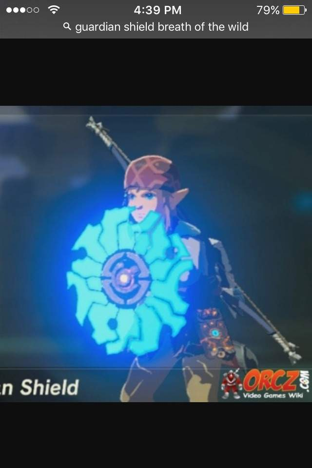 Top 3 best shields in breath of the wild except the hylian